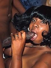 Thick black slut sucks a big cock