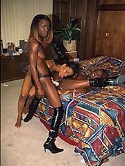 Three horny black babes put dildos to..